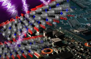 Nový 2D materiál excelentně stíní elektromagnetické záření