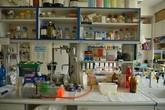 Účinné lipofosfonoxiny – antibiotika nové generace?